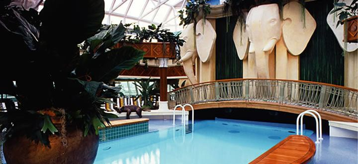 Radiance of the Seas Solarium Pool